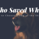 Who Saved Who How to Choose a Dog at the Shelter 1024x1024 1